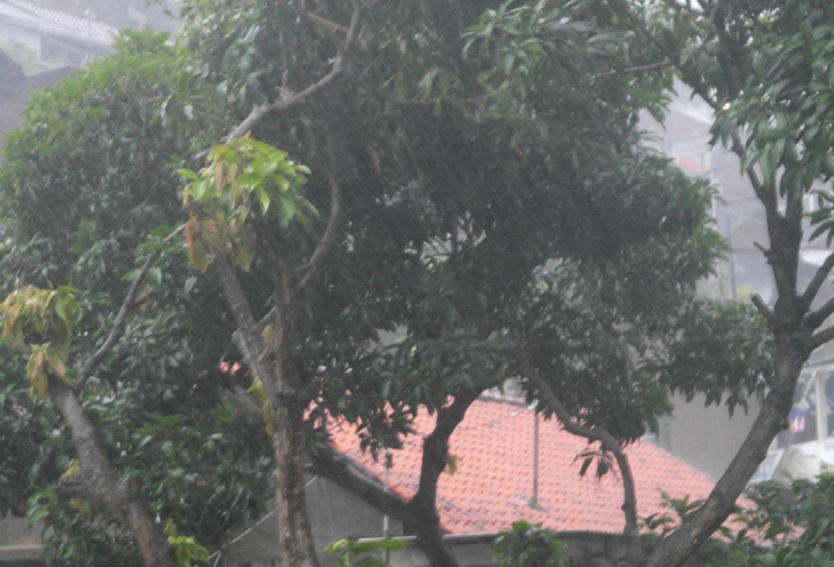 Hari Ini Semarang Hujan Deras setelah Seharian Kemarin Pemilu